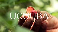 Ekos | Ucuuba | Reparación de la piel